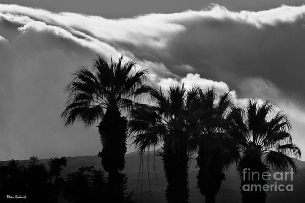 Photograph - Clouds Bending To The Palms by Blake Richards