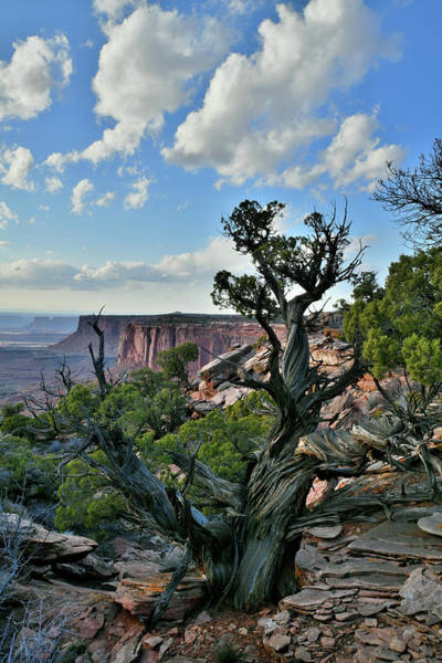 Photograph - Clouds Over Canyonlands National Park by Ray Mathis