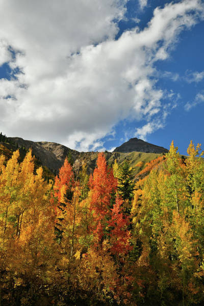 Photograph - Clouds Roll In Over Fall Aspens At Red Mountain Pass by Ray Mathis