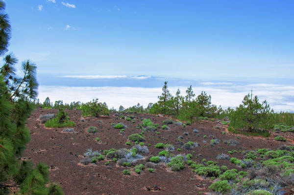 Photograph - Clouds Surrounding The Teide National Park by Sun Travels