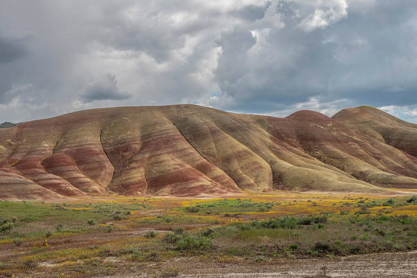 Photograph - Cloudy Painted Hills by Matthew Irvin