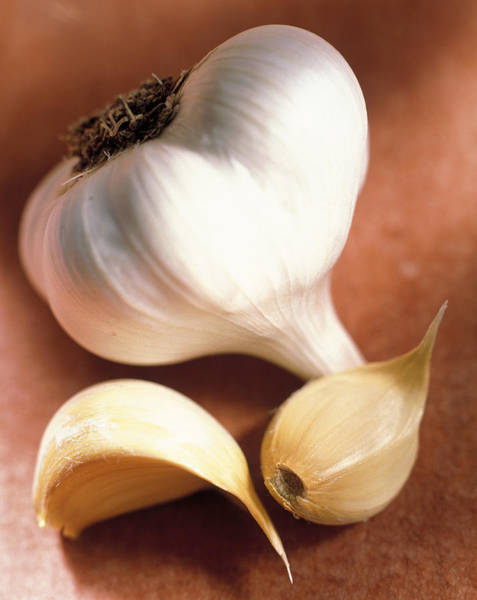 Wall Art - Photograph - Cloves Of Garlic by Peter Ardito