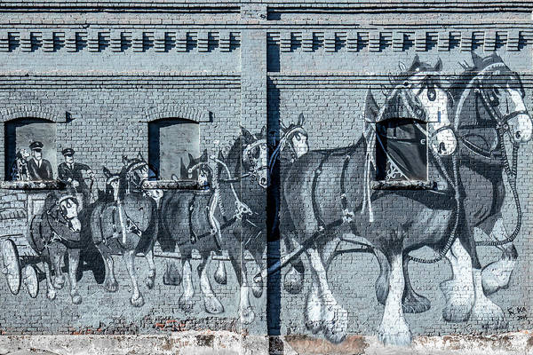 Wall Art - Photograph - Clydesdale Mural by Todd Klassy
