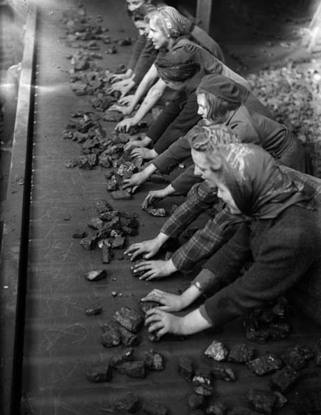 Reportage Photograph - Coal Conveyor Belt by Express