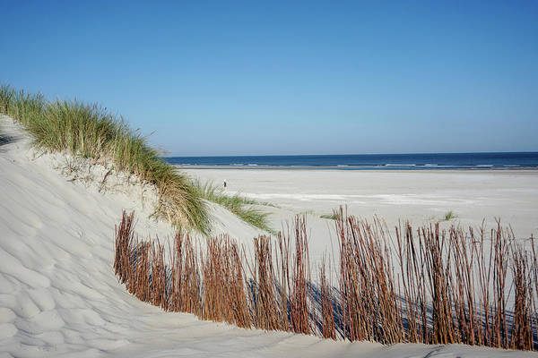 Art Print featuring the photograph Coast Ameland by Anjo Ten Kate