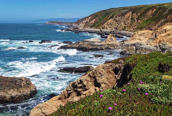 Photograph - Coast At Bodega Head by Carolyn Derstine