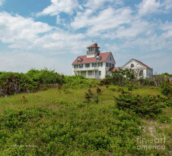 Photograph - Coast Guard Beach Sentinel by Michelle Constantine