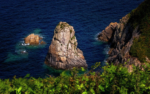 Photograph - Coast Of Spain by Tom Singleton