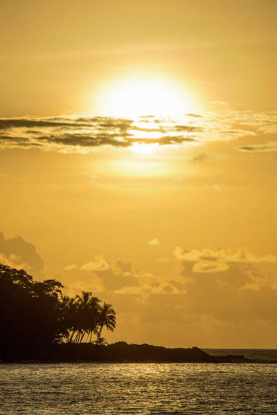 Wall Art - Photograph - Coast With Palm Trees At Sunset Bom Bom Resort Pr Ncipe Island Sao Tome And Principe by imageBROKER - Matthias Graben