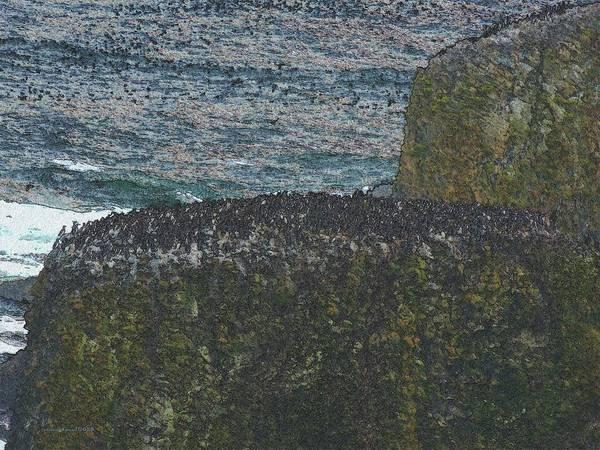Digital Art - Coastal Congregation by Vincent Green