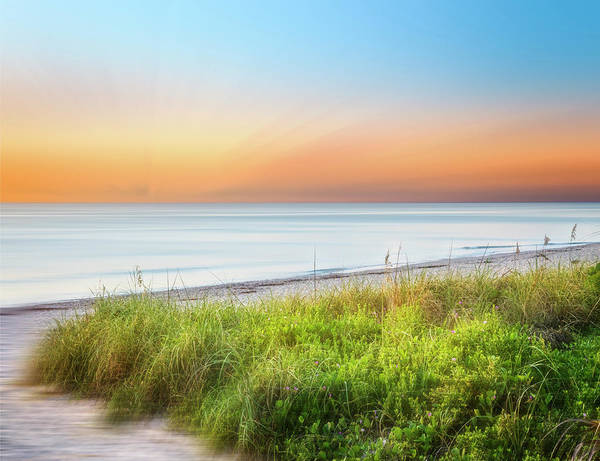 Wall Art - Photograph - Coastal Dunes Dreamscape II by Debra and Dave Vanderlaan