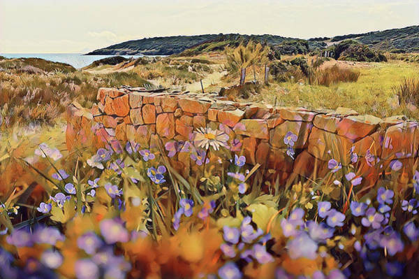 Coastal Pathway Throuigh The Dunes Art Print