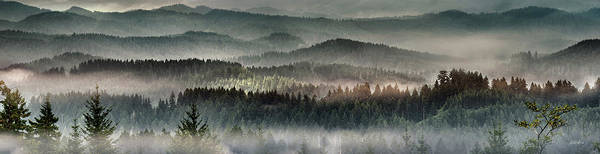 Oregon Ridge Photograph - Coastal Range Panoramic 3 by Leland D Howard