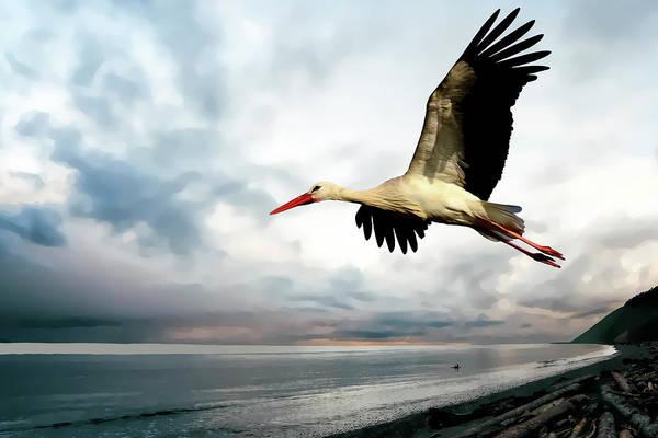 Wall Art - Digital Art - Coastal Stork by Daniel Hagerman