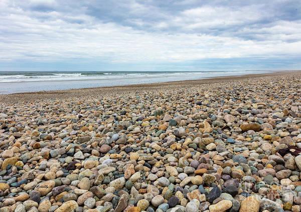 Photograph - Coastal Treasures by Michelle Constantine