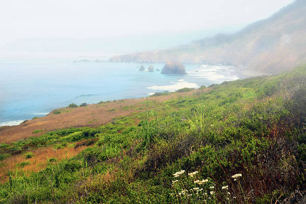 Wall Art - Photograph - Coastal Views Fog by Frank Wilson