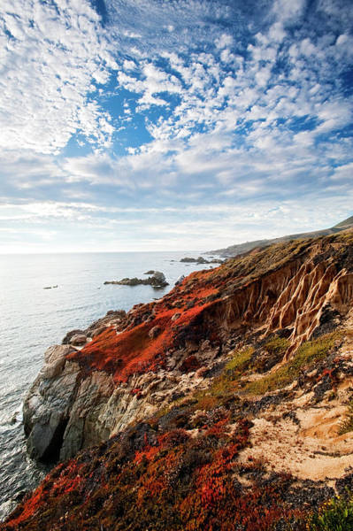 Big Sur Photograph - Coastline At Soberanes by Doug Steakley