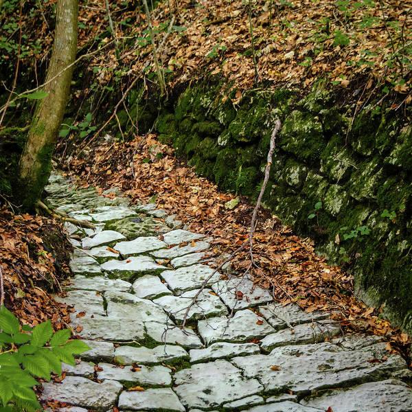 Photograph - Cobblestone Path by Borja Robles