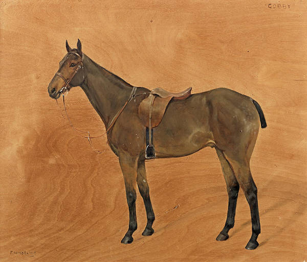 Herd Of Horses Wall Art - Painting - Cobby by Frances Mabel Hollams