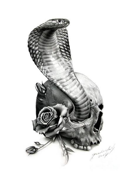 Wild Flowers Drawing - Cobra by Miro Gradinscak