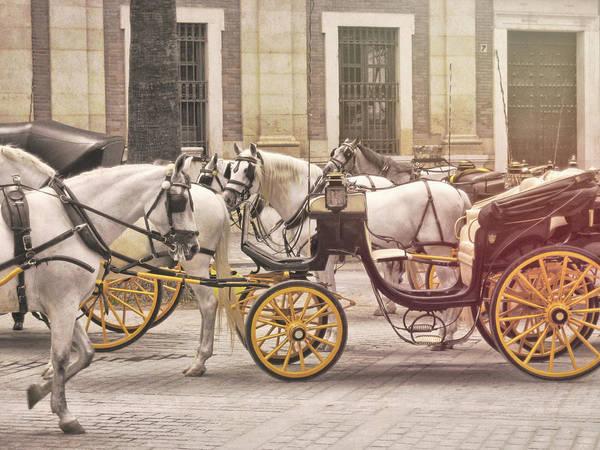 Photograph - Coche De Caballos by JAMART Photography