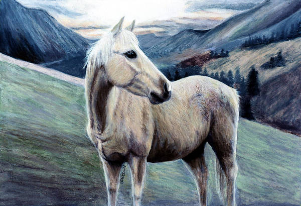 Aqha Painting - Cochise by Amber Dennis
