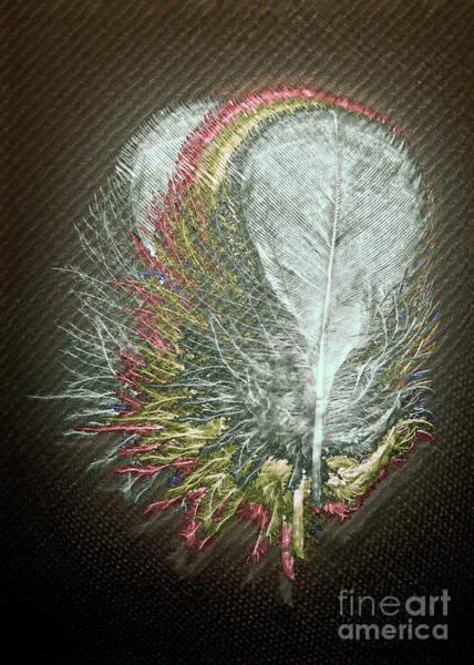 Wall Art - Digital Art - Cockatoo Feather by Anthony Ellis