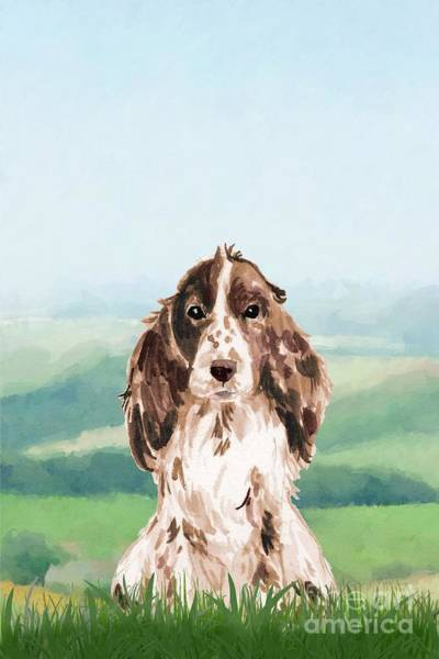 Pedigree Painting - Cocker Spaniel by John Edwards