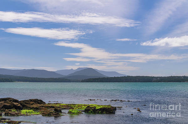 Photograph - Cockle Bay 02 by Werner Padarin