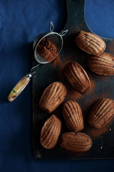 Sponge Photograph - Cocoa Madeleines by Studer-t. Veronika