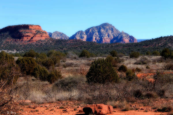 Canyon Mixed Media - Coconino Forrest 0022 by G Berry