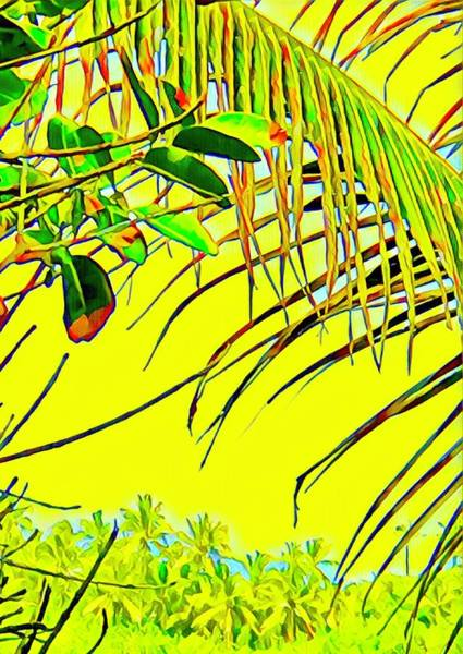 Photograph - Coconut Fronds Yellow Ahalanui  by Joalene Young