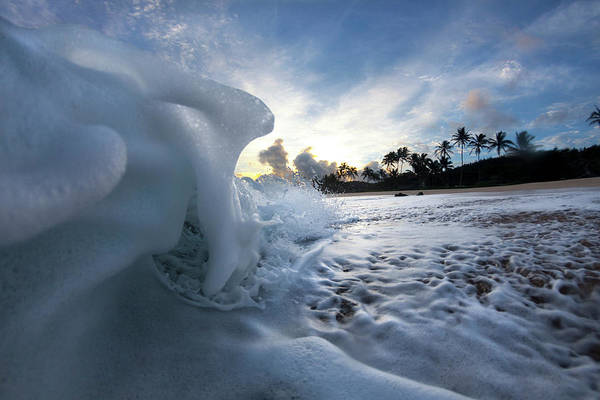 Photograph - Coconut Meringue by Sean Davey