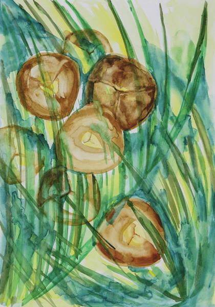 Coconut Tree Art Print