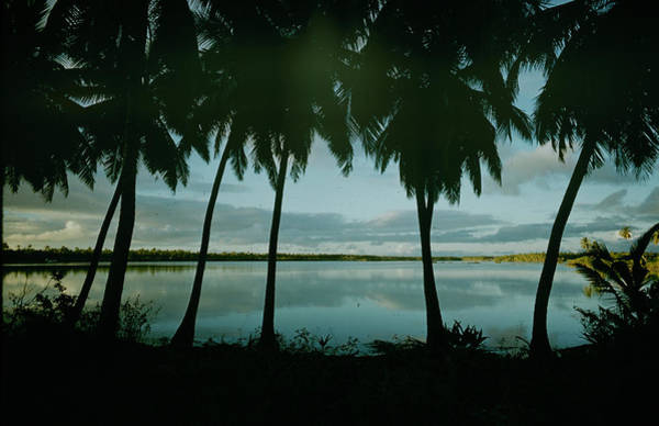 Photograph - Cocos Islands, Costa Rica - The Mystery by John Dominis