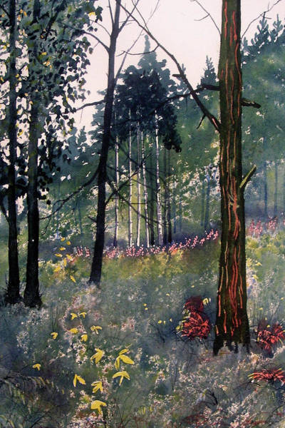 Painting - Codbeck Forest by Glenn Marshall