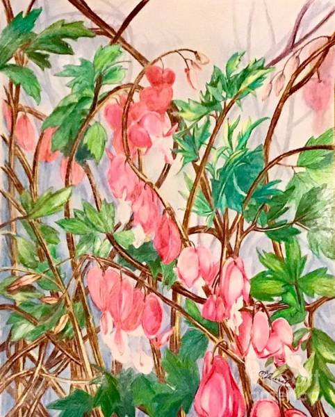 Drawing - Code Pink Its Springtime by Laurel Adams