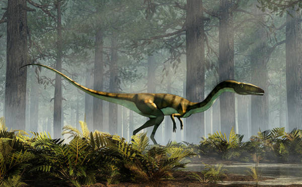 Digital Art - Coelophysis In A Forest by Daniel Eskridge