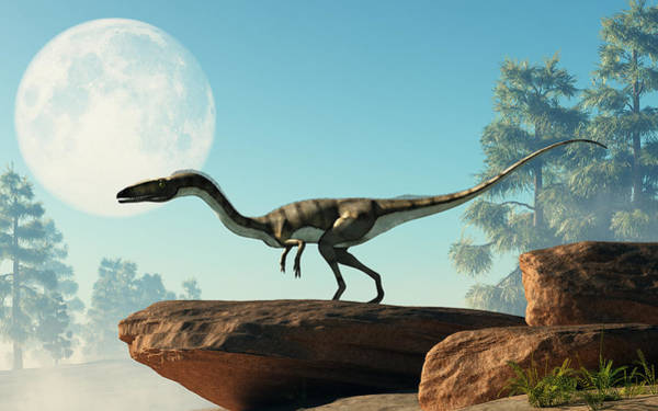 Digital Art - Coelophysis On A Rock Under The Moon by Daniel Eskridge