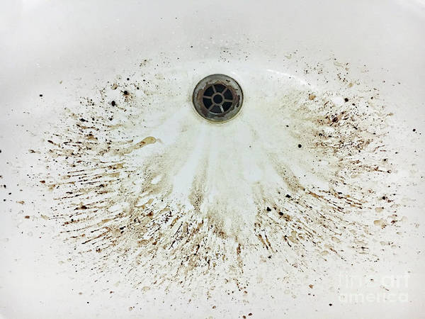Wall Art - Photograph - Coffee Grounds In A Sink by Tom Gowanlock