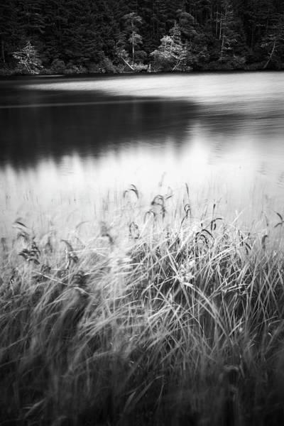 Photograph - Coffenbury Lake by Whitney Goodey