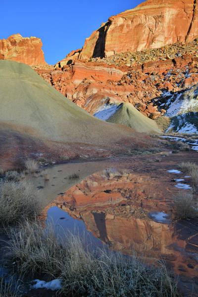 Photograph - Cohab Canyon Reflection In Capitol Reef by Ray Mathis