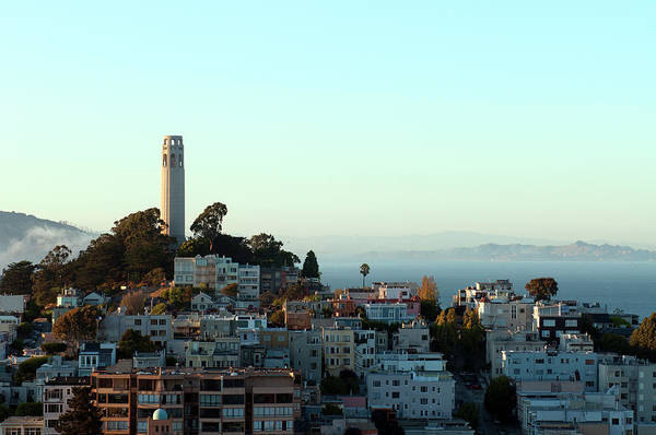 Coit Tower Photograph - Coit Tower On Telegraph Hill In San by Sabrina Dalbesio