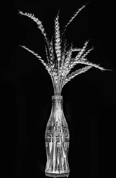 Photograph - Coke And Wheat Still Life Black And White by JC Findley