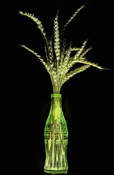 Photograph - Coke And Wheat Still Life by JC Findley