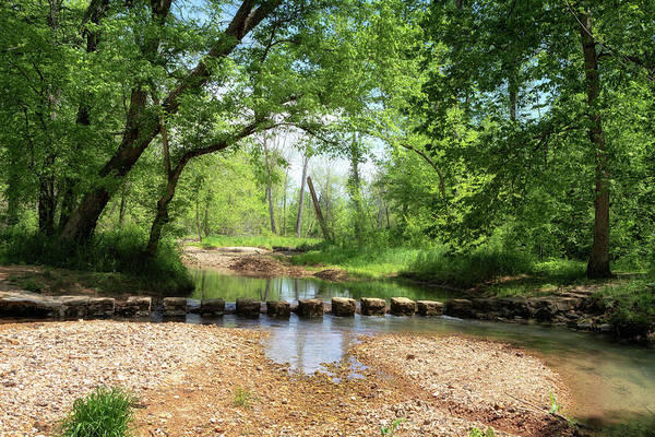 Photograph - Colbert Creek Stepping Stones by Susan Rissi Tregoning