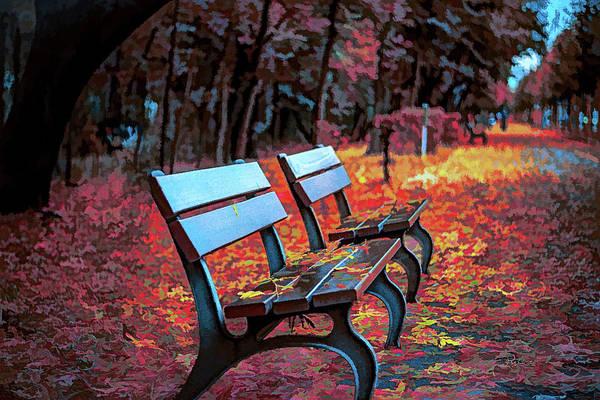 Park Bench Digital Art - Cold Benches by Dave Luebbert