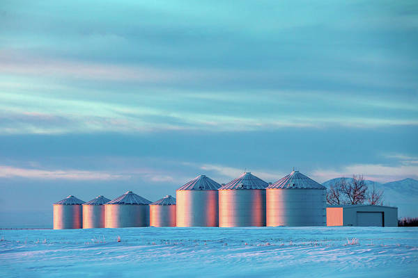 Wall Art - Photograph - Cold Colorful Bins by Todd Klassy