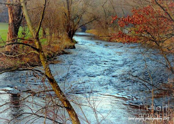 Photograph - Cold Creek December by Tami Quigley