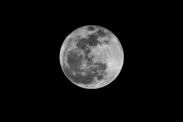 Photograph - Full Cold Moon by Bradford Martin